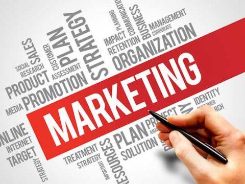 Cử nhân Kinh doanh và Marketing  (ĐH Sunderland cấp bằng)
